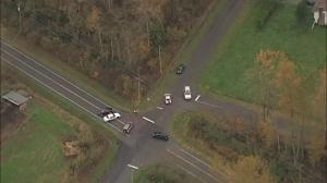 Possible human remains discovered along road in Langley