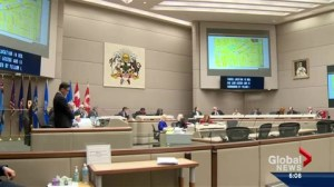 Secondary suite bylaw passes first reading