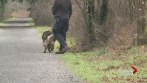 Another serious attack on popular Vancouver Island trail