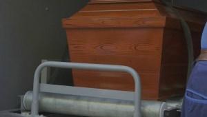 Boys' aunt says nephews didn't deserve to die