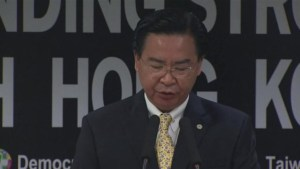 Taiwan's opposition party offers support to Hong Kong protesters