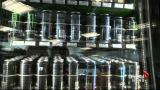 Foundation urges less sugar consumption