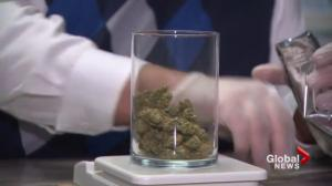 Nova Scotians react to new pot legislation