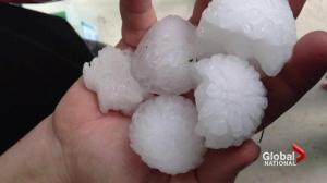 Thunderstorm, hail and tornado warnings in Alberta
