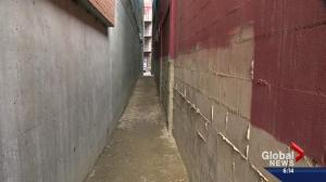 Edmontonians behind alley art hope to alter downtown for the better