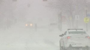 New Brunswick gets hammered with winter blizzard