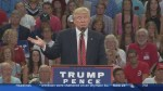 Trump takes heat over Second Amendment remark