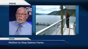 Petition to halt expansion of open-net salmon farms presented in B.C. legislature
