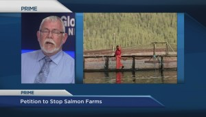 Petition to halt expansion of open-net salmon farms presented in BC legislature