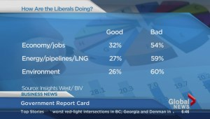 BIV: Government report card