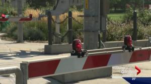 Edmonton businesses fear Metro Line LRT problems are costing them money