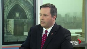 The West must stop terrorist groups from creating a state: Kenney