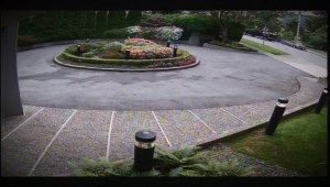 Caught on Video: Shocking hit-and-run in West Vancouver