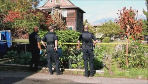 East Van community garden attack
