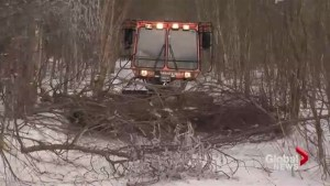 New Brunswick snowmobile trails devastated by ice storm