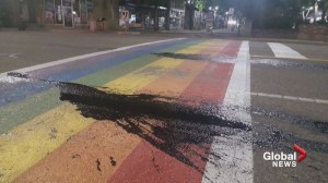 Lethbridge's pride rainbow crosswalk smeared with manure, rust paint
