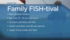 Affordable Family Day activities in Calgary