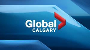 WATCH: Comic book creator Stan Lee's Calgary Comic Expo visit