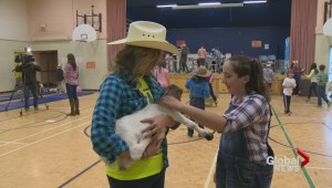 Halifax-area school hosts 'Goat Day' to celebrate fundraising success