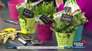 Spring designs by the experts at the Edmonton Home and Garden Show