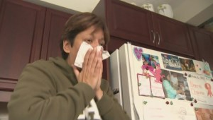 Is flu vaccine poor match for this year's virus strain?