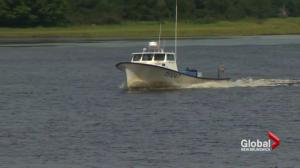 Search underway for missing boater near Kouchibouguac National Park