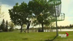 Young Lethbridge boy makes waves in the sport of disc golf