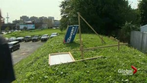 Candidate signs vandalized in Halifax
