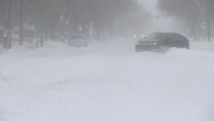 Weyburn, Sask. digs itself out of first blizzard this winter