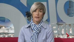 Q & A with dog behaviourist Sandy Yates