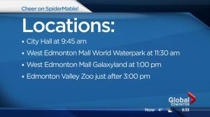 Elaborate plan underway to grant six-year-old Edmonton girl's wish