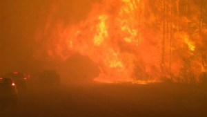 'It's like Armageddon': Fort McMurray resident who stayed describes torched city