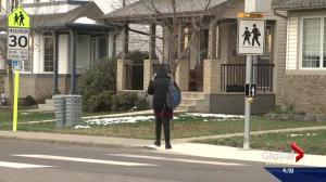 Edmonton sees drop in injury collisions since school zone reintroduction
