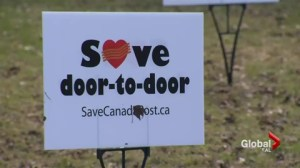 Community mail box dispute in Dorval