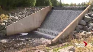 Water restrictions lifted in Dartmouth, Cole Harbour, surrounding area