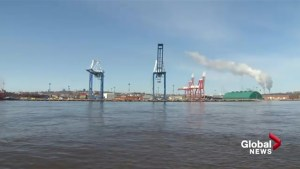 Design engineering contract awarded in Port Saint John mega project