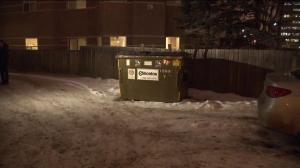 Edmonton woman attacked while taking out the garbage