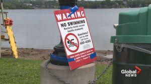 Beach closures up this year