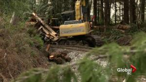 RCMP confirm Woss train derailment claims third life