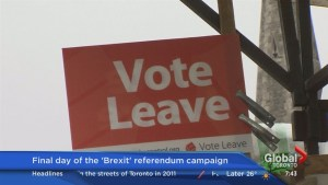 "The importance of the ""Brexit"" vote"