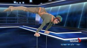 Sample of Cirque du Soleil Kurios