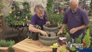 Miniature Gardening Fun for Kids
