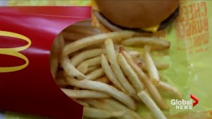 What ingredients go into McDonald's French fries?
