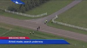 Massive ground search near Delacour, Alta