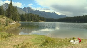 First Canadian detection of fish disease found in Banff