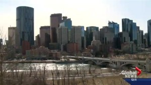 Calgary's population holds relatively steady amid economic downturn