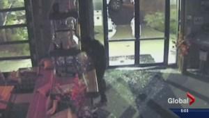 Vernon distillery theft caught on camera