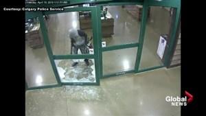 Calgary police investigate gun theft at Cabela's