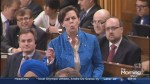"""Conservative candidate Kellie Leitch defends """"Anti Canadian Values"""" proposal"""