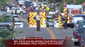 Virginia neighbourhood in shock following shooting at baseball diamond